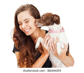 Heart-warming photo of a little crossbreed dog in the arms of a beautiful young girl, licking her face