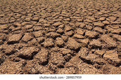 Heat , drought parched ground .