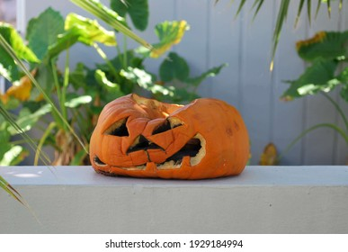 The heat takes a toll on a Jack-O-Lantern in Florida