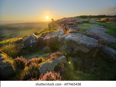 Heather blooming at sunset on Curbar Edge, Peak District