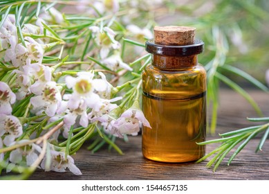 Heather essential oil in a small bottle closeup.