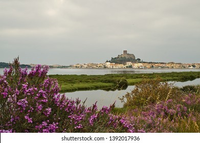 Heather in the foreground of a view of Barbarousse Castle, Gruissan on a dull day
