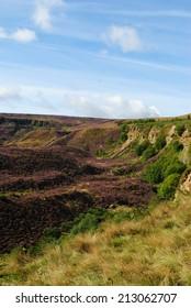 Heather moor near Huddersfield