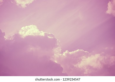 Heavenly pink fluffy clouds in sky. Copy space. For background and wallpaper