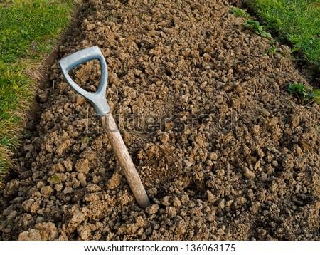 Genial Heavy Clay Soil With Buried Broken Garden Fork   Gardening Problem