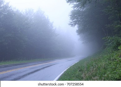 Heavy Fog on Street in the Woods