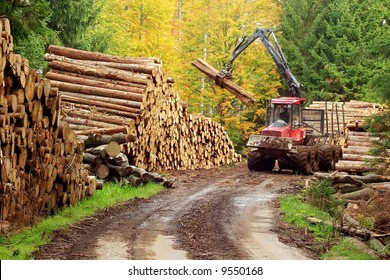 Heavy forest machinery working with logs