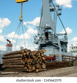 Heavy lifting crane is ready to load wooden logs. Industrial cargo crane at a port. Logging and transportation of wood