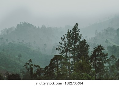 Heavy rain above a green valley in tropical Sri Lanka.