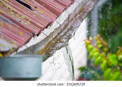 Heavy rain, rainwater from the roof overflows through the drainpipe