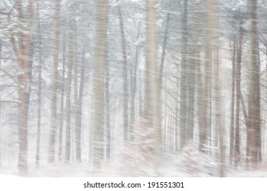 Heavy Snow Falling in  a Forest. Motion blurred in-camera for effect.