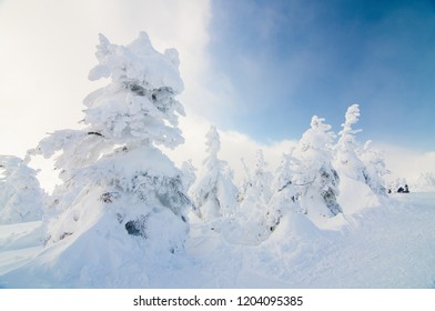 Heavy snow at Zao Mountain peak, Tohoku, Japan.