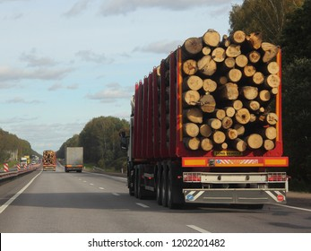 Heavy trucks transports logs on a semi-trailer on a suburban asphalt highway on a summer day against a green forest and blue sky with clouds - commercial timber import in Europe, trading