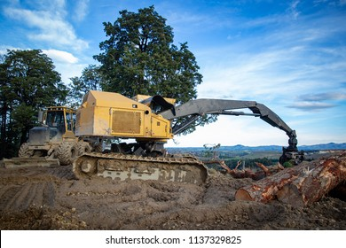 Heavy yellow logging machinery working on a logging site
