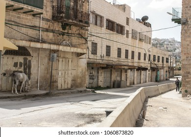 Hebron, Occupied Palestinian Territory, Israel, 07/15/2016 Abandoned Street of the city of Hebron in the occupied Palestinian territory with a horse on the side