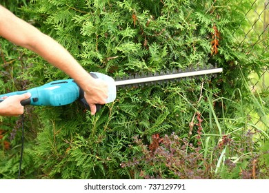 Hedge trimmer with electric scissors.