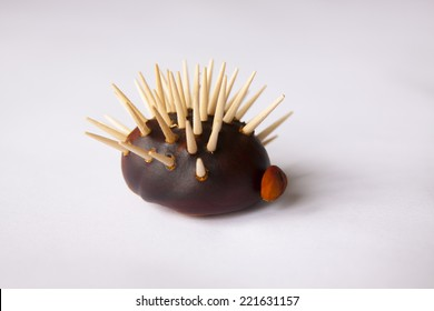 Hedgehod make from chestnut and  on the white background
