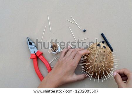 Hedgehog Artwork Diy Craft Coconut Shell Stock Photo Edit Now