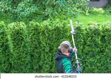Hedges cutting with gasoline telescopic hedge trimmer.