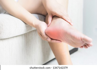 Heel pain , Tendon inflammation