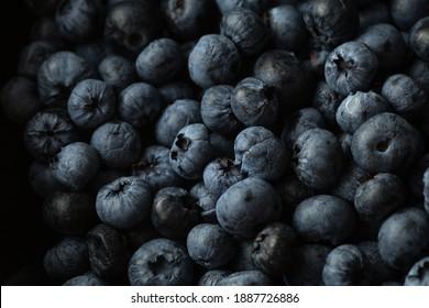 Heidelbeeren auf Schiefer Close up - Shutterstock ID 1887726886