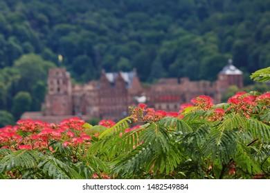 Heidelberg is a city on the Neckar in Germany, Schloss