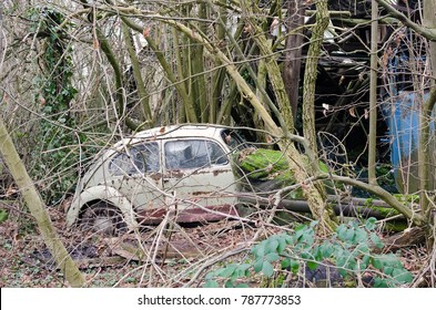 Heilbronn, Germany - 12.25.2017: Old Volkswagen Beetle, rusty and partially covered by moss, abandoned in a forest. The Volkswagen Type 1, was an economy car produced from 1938 until 2003.