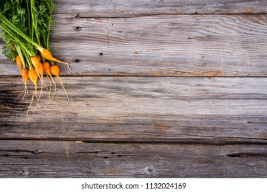 heirloom organic miniature carrots over a rustic wood plank background