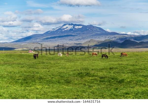 Hekla is a still active volcano, north of Hella