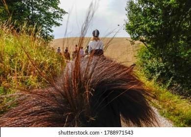 Helgenae, Denmark July 29, 2020 A woman horsebackriding in the fields.