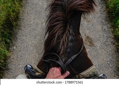 Helgenae, Denmark July 29, 2020 A man holds the reins while horsebackriding.