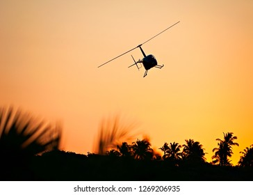 Helicopter aginst sunset with palm leaves