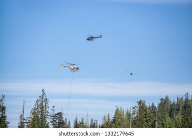 Helicopter fighting BC forest fires during a hot sunny summer day. Taken near Port Alice, Northern Vancouver Island, British Columbia, Canada.
