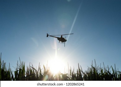 A helicopter sprays crops