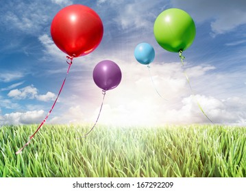 helium balloons flying into the sky