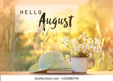 hello August. chamomile flowers, book, braided hat in summer garden. Rustic landscape with  daisy in sunlight. Summertime season