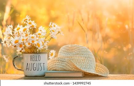 Hallo August. schöne Komposition mit Kamillenblumen im Cup, altes Buch, geflochtener Hut im Garten. Landschaftlicher Hintergrund mit Kamille bei Sonnenlicht. Sommersaison. Kopienraum