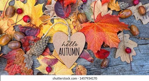 Hallo Herbst! Herbsthintergrund mit Herzgrußkarte und bunten Blättern auf Holzbrett. Thanksgiving-Holztisch dekoriert hellen Herbstblätter. Herbstsaison, Herbsthintergrund