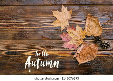 Hello autumn card. beautiful autumn natural composition. autumn leaves and cones on rustic wood background. concept of the fall season.  top view.
