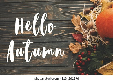 Hello Autumn Text. Hello Fall sign on pumpkin, autumn vegetables with colorful leaves,acorns,nuts, berries on wooden rustic table. Fall seasons greeting card. Atmospheric image