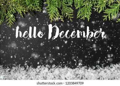 HELLO DECEMBER greeting card. concept of the fall season. Great season texture with december and winter mood