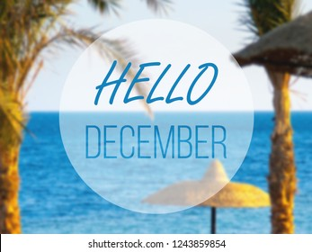 hello december, hot winter in tropical sea