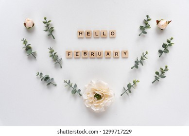 Hello February words on white marble background
