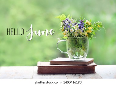 Hello June. beautiful composition with wild forest flower in Cup and old books on wooden white table. summer time season. delicate home interior with flower and books.