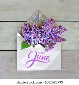 Hello June hand lettering card. Summer lilac flowers in envelope.