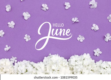 Hello June hand lettering card. Summer flowers on violet background.