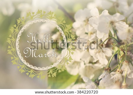 Hello March Wallpaper Spring Garden Background Magical Blooming Cherry Tree