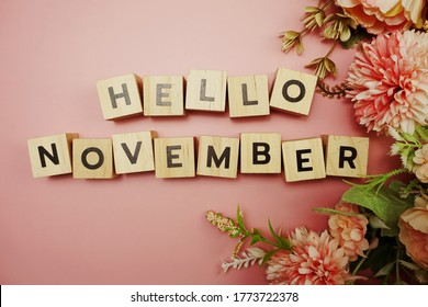Hello November alphabet letter with space copy on pink background