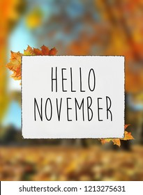 Hello November autumn text quote on white plate board banner fall leaves blur background