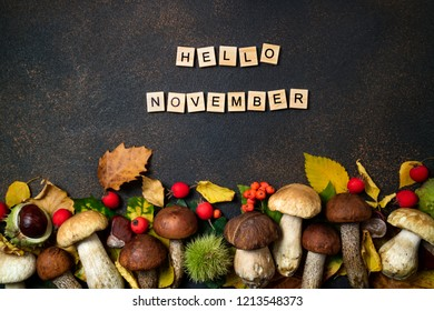 Hello November card. Mushrooms Boletus, chestnuts, wild berries, rowan and Autumn leaves background. Autumn composition. Fall season mood. Top view